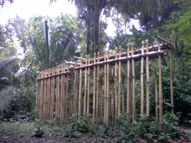 Januari   2011   Ketut Supeksa Anak Bali